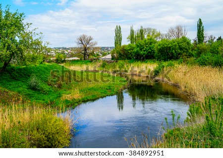 Spring nature green vegetation and the blue sky - stock photo
