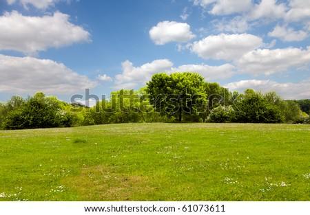 Spring nature, landscape - stock photo