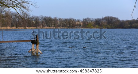Spring near town Ceske Budejovice with blue ponds