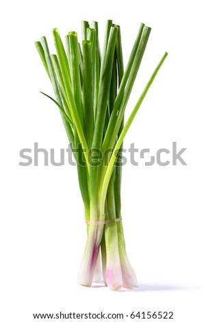 Spring onion - stock photo