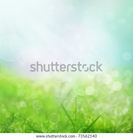 Spring or summer  abstract nature background with grass in the meadow and blue sky in the back - stock photo
