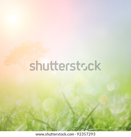 Spring or summer abstract nature background with grass in the meadow and sunset sky in the back - stock photo