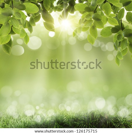 backgrounds of nature