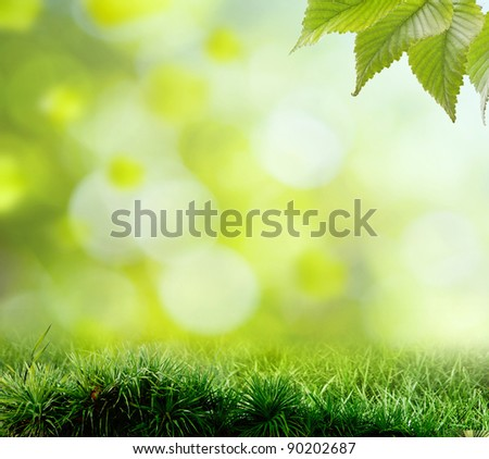 Spring or summer season abstract nature background with grass - stock photo