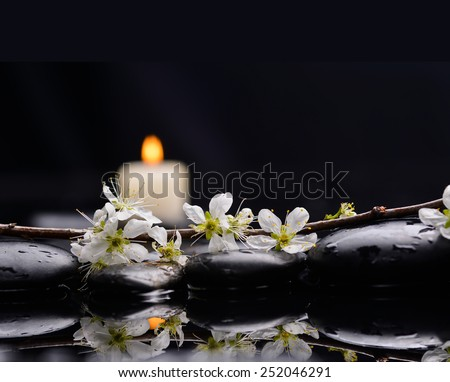 Spring peach blossom with two candle with therapy stones