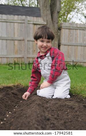 Spring planting - stock photo