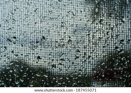 Spring rain on window screen with blurred background