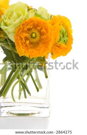 Spring Ranunculus - stock photo