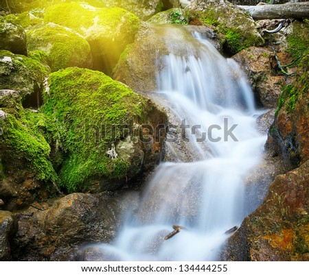 Spring rill flow. Nature composition. - stock photo