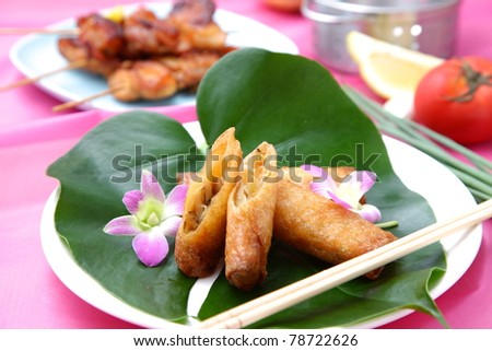 spring roll - stock photo