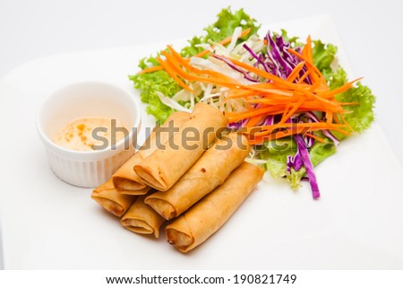 Spring rolls food - stock photo