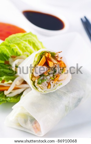 spring rolls with vegetables and chicken - stock photo