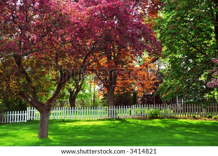 Spring rural landscape with white picket fence and blooming apple trees - stock photo