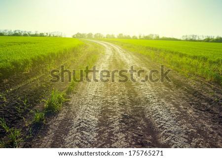 spring rural scene - stock photo