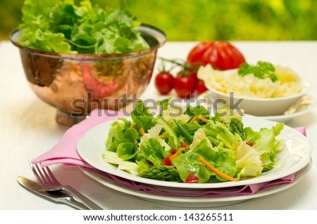Spring salad with early vegetables and Tete de Moine cheese - stock photo