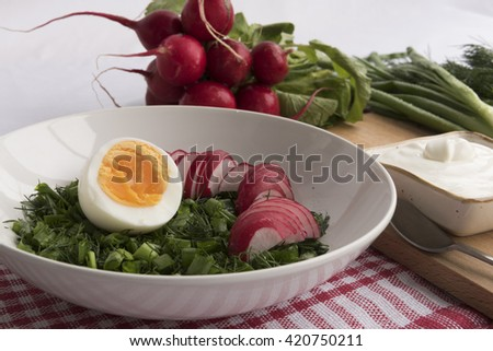 Spring salad with radish, egg, onion, parsley and sour cream - stock photo
