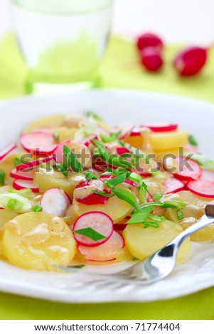Spring salad with radishes, potato and fresh green onion