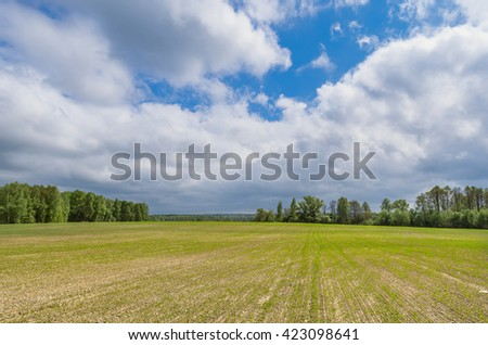 Spring scene. Kauga region, Russia - stock photo
