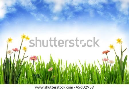 Spring scenery - stock photo