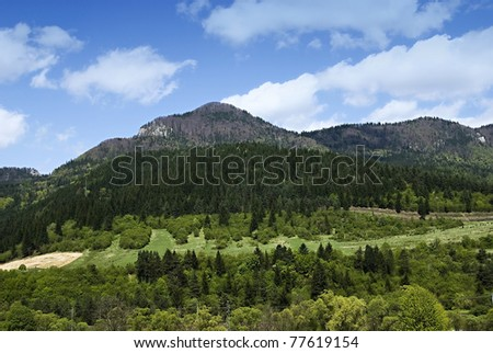 Spring scenery with mountain
