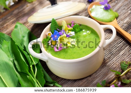 Spring soup - stock photo