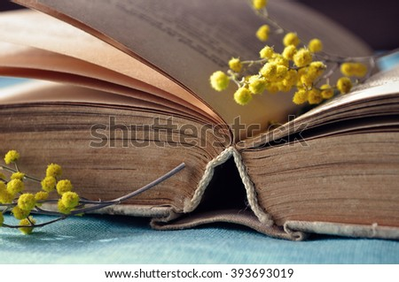 Spring still life -  open old book with yellow mimosa flowers.  Selective focus at the book's spine - shallow depth of field - stock photo