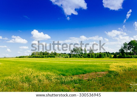 Spring summer background - rural road in green grass field meadow scenery lanscape with blue sky - stock photo