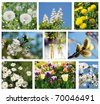 Spring - summer, collage - stock photo