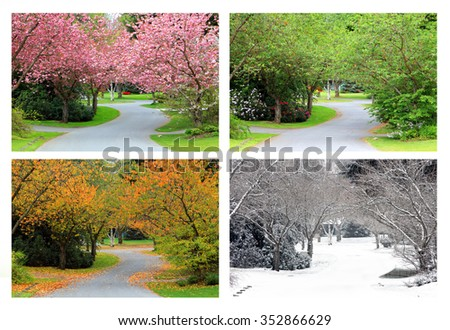 Spring, Summer, Fall and Winter. Four seasons photographed on the same street from the exact same location.  - stock photo