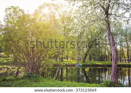 spring summer green Sunny Park - stock photo