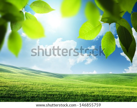 spring sunny background - stock photo