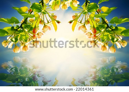spring sunset at the seaside - stock photo