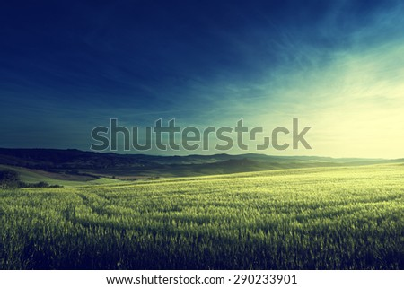 spring sunset in Tuscany, Italy - stock photo