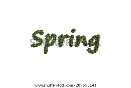 spring text tree with white background concept of typography - stock photo