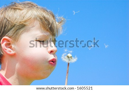 Spring time - stock photo