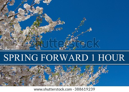 Spring Time Change, A tree in full bloom with blue sky and text Spring Forward 1 Hour - stock photo