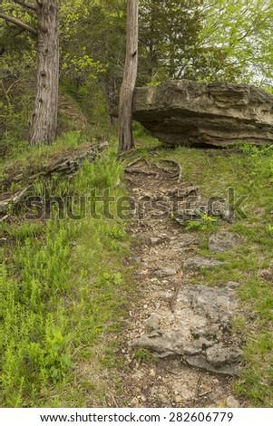 Spring Trail Scenic - stock photo
