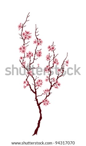 Spring tree with pink blossoms on white background - stock photo