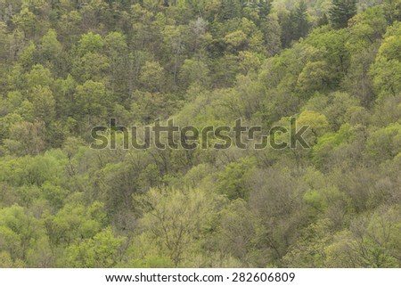 Spring Trees On Hills - stock photo