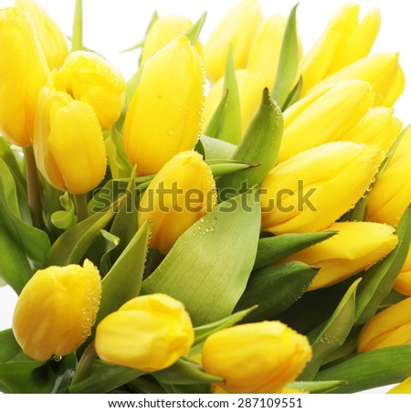 Spring tulips bouquet  in glass vase with water - stock photo