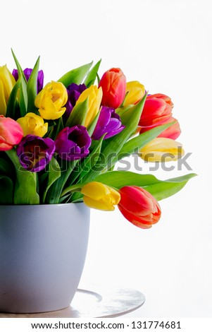 Spring tulips - Colorful fresh spring tulips flowers in vase on white background