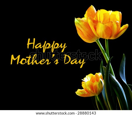 Spring Tulips Happy Mother's Day Card - stock photo