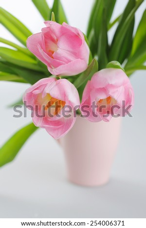 Spring tulips in a bouquet in a vase