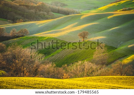 Spring Tuscan fields bathed in warm sunlight between Siena and Rome - stock photo