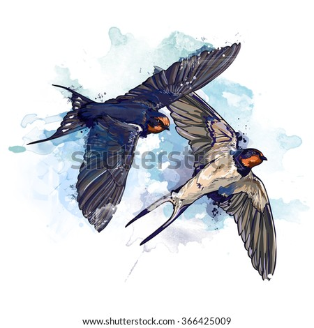 spring two birds watercolor illustration - stock photo