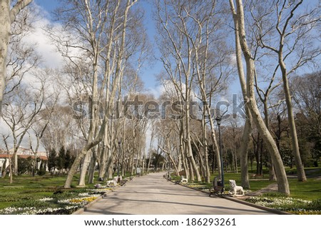 Spring view on main walkroad of Gulhane park, Istanbul, Turkey - stock photo