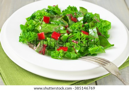 spring-vitamin-fresh-salad-of-lettuce-swiss-chard-tatsoi-spring-onion ...