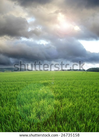 Spring weather - stock photo