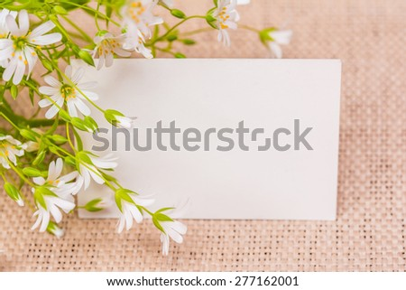 Spring white blooming flowers. Greeting card background  - stock photo