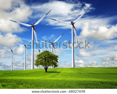 Spring Wind - stock photo